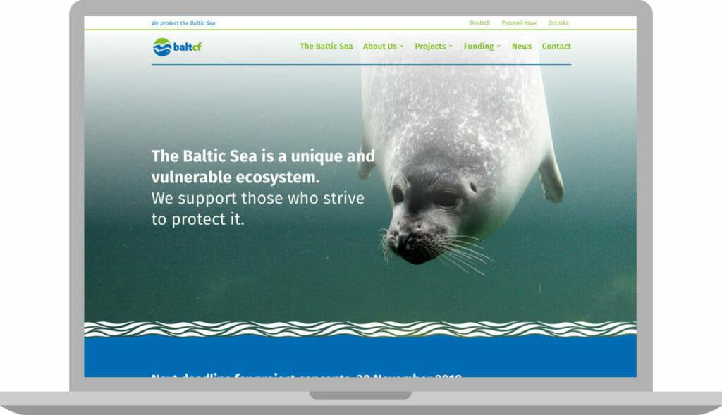 webdesign-baltcf