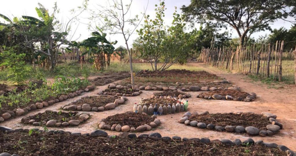 Permakultur-Garten von co-creando